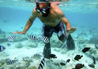 safari-blue-snorkel-1