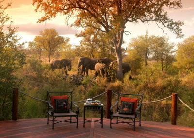 hoyo-hoyo-safari-lodge-view-elephants-from-deck-590x390
