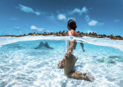 maldives-water-stingray
