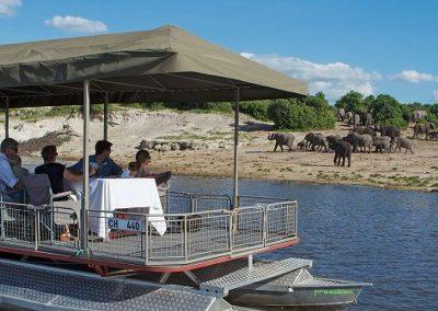 botswana-chobe-boat-game-drive
