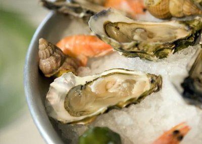 garden-route-oyster-festival
