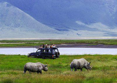 ngorongoro-crater-rhino-safari