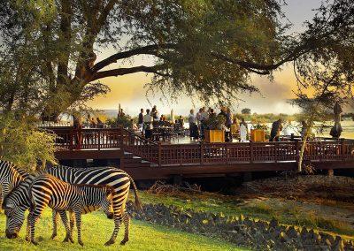 vic-falls-Victoria-Falls-Hotel-river-zebra